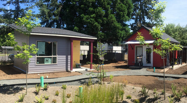 Essex Tiny Homes Ready for Residents image